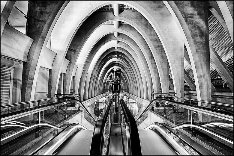 Artistieke architectuur 16 - Het station van Guillemins in Luik is een heel bijzonder gebouw in allerlei opzichten. Het is gebouw dat je pakt en al je