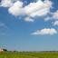 Het Friese landschap, kerktoren, boerderij, koeien