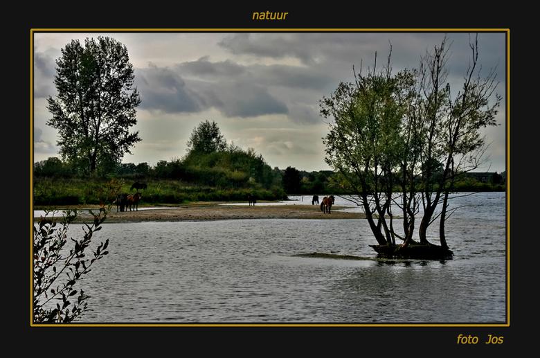Natuur - Zomaar een mooi stukje natuur als gevolg van het ontstaan van de Kraayenbergse plassen nabij Gassel/Beers. <br /> groet Jos