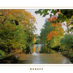 Herfstkleuren in Bierum