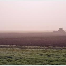 Boer in de mist