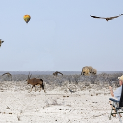 Safarilandschap fantasie