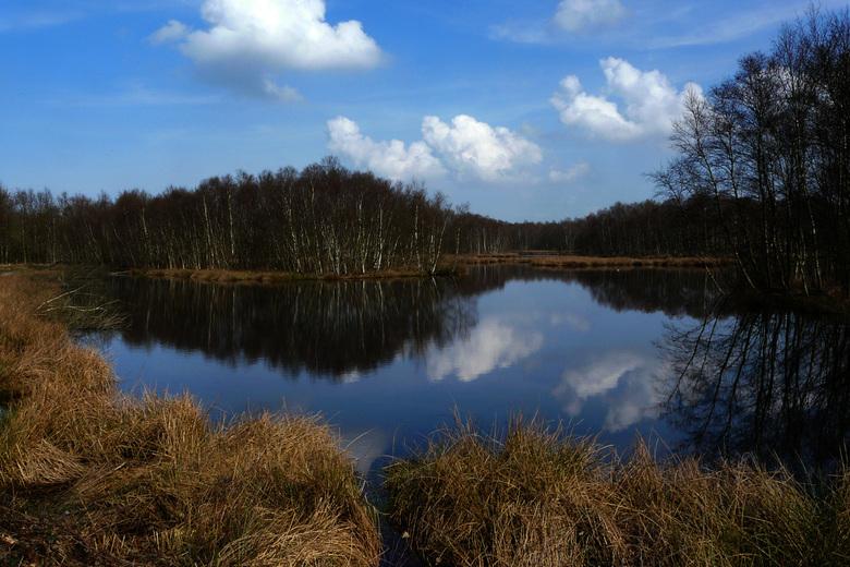 Engbertsdijkvenen - Op een mooie lentedag naar de Engbertsdijkvenen geweest. Dit prachtige natuurgebied ligt tussen Kloosterhaar en Bruinehaar.