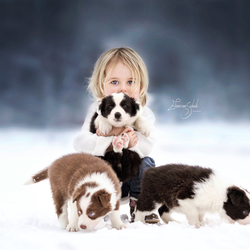 winter beauty with lovely dogs