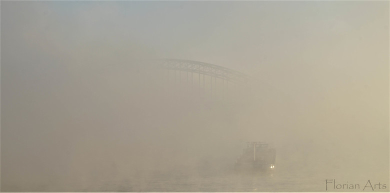 Waal in de mist -