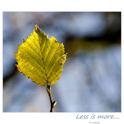 Less is more....