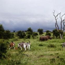 Zuid-Afrika 2004