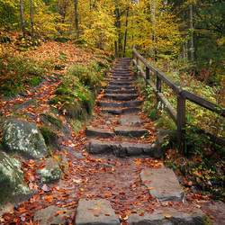 Klimmetje naar de herfst