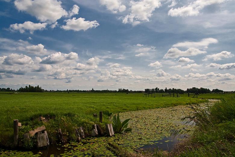 Groen / Blauw - Onlangs nabij het plaatsje Noordeinde (Noord-Holland) genomen weilandkiekje