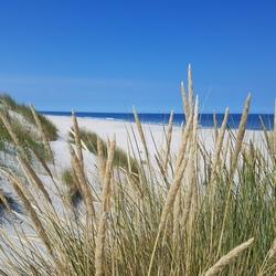 Amelands prachtige duinlandschap