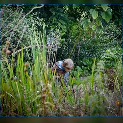 op zoek naar beestjes en bloemetjes...