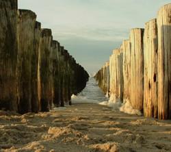 zee hout in knokke