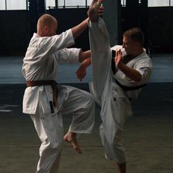 karate actie