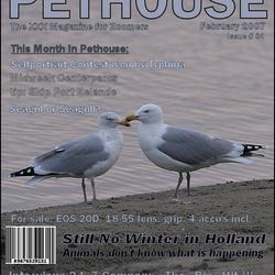 Pethouse - Februari 2007 - Issue 04