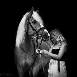 Whoever said diamonds are a girls best friend, has never owned a horse.