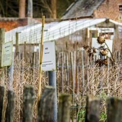 kruidentuin bij Postel België