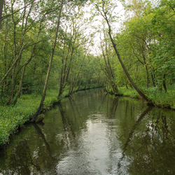 Naardermeer - Martelaarsgracht