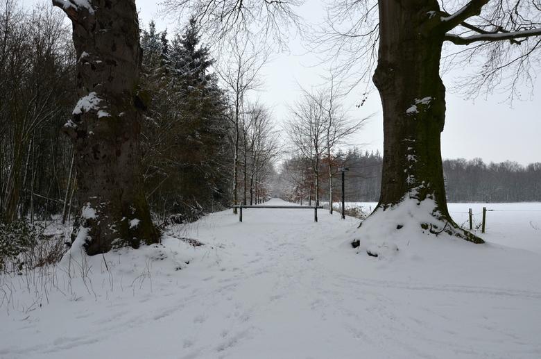 Winter - Winter landschap IJselvliedt Wezep