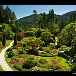 Butchart' Gardens beauty