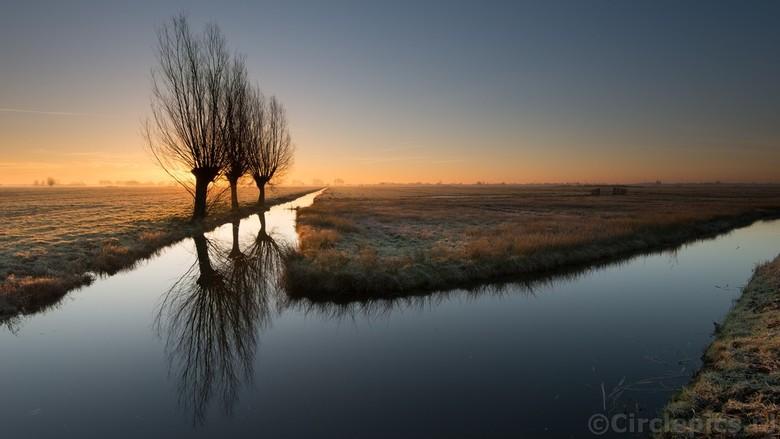 T(h)ree of a kind  - Een van mijn favoriete fotolocaties en nog dicht bij huis ook: de Alblasserwaard. Typisch Nederlands polderlandschap en daarnaast