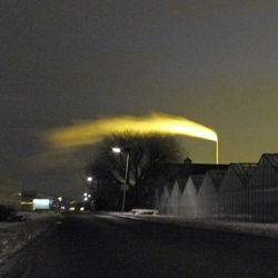 Winternacht in Westland