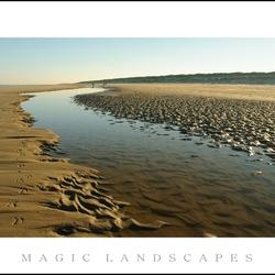 strand en duinen3