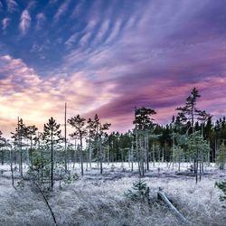 Zonsondergang in harteje Zweden