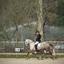 2019-04-07 Paardensportwedstrijden subtop dressuur