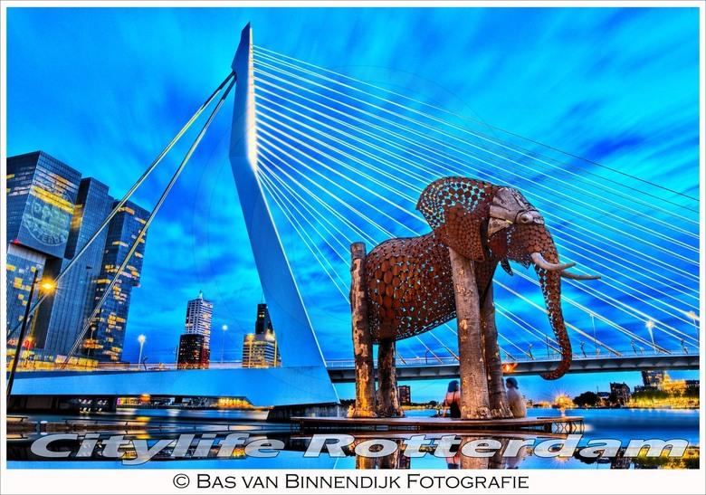 Bas van Binnendijk Fotografie - basvanbinnendijkfotografie citylife rotterdam<br /> <br /> magnificent art production great picture