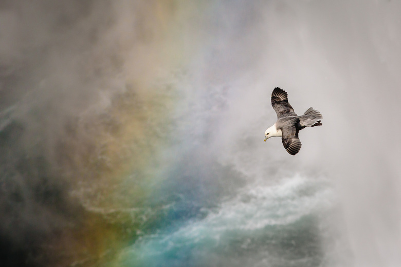 Flying over the rainbow