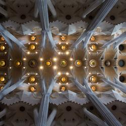 Plafond van Sagrada Família