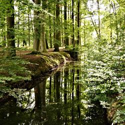 Reflectie in Barneveld