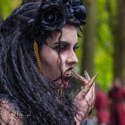 Elfia Festival