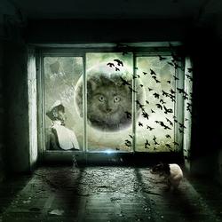 Bewerking: Full Moon ...