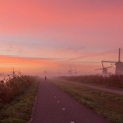 Misty Dutch Sunrise