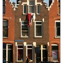 Oosterzee Rotterdam