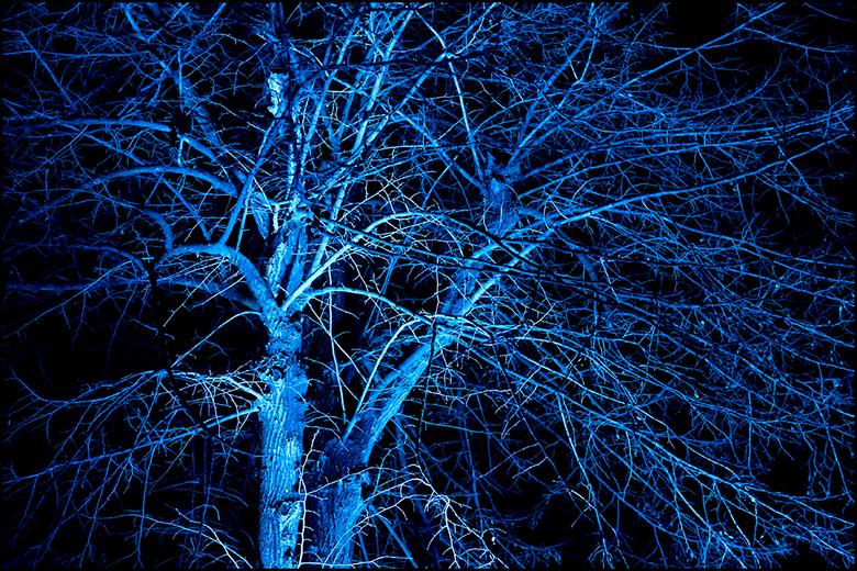 Lightart 18 - Vaak zien dingen 's avonds toch net even anders, lees spannender, uit dan overdag het geval is. Wanneer men dan ook nog eens heerli
