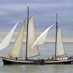 Bruine Vloot