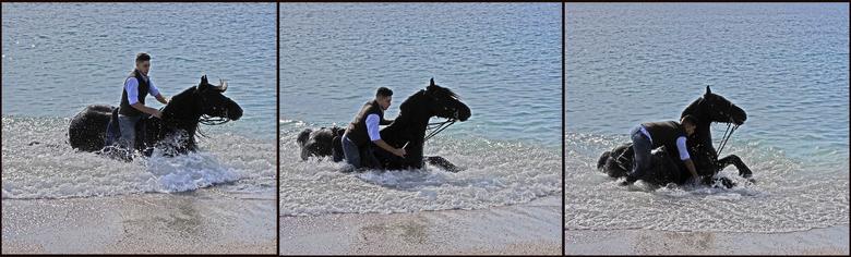 Ietsje te.. - enthousiast. Hij viel bijna in zee. Ik weet het, het paard is te donker, de zon stond recht tegen over me en het is ook nog een uitsnede