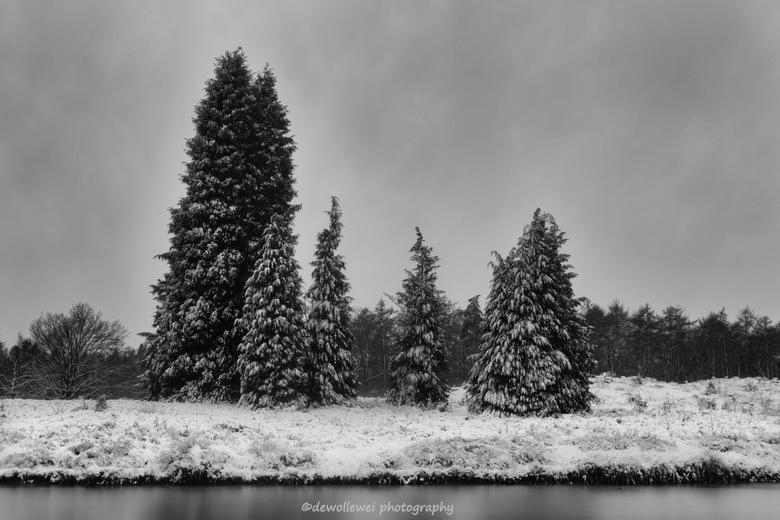 winter landschap -