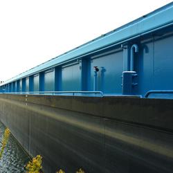 DSC_4094  Lang en blauw.