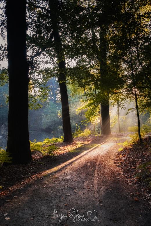 Follow the light.... -