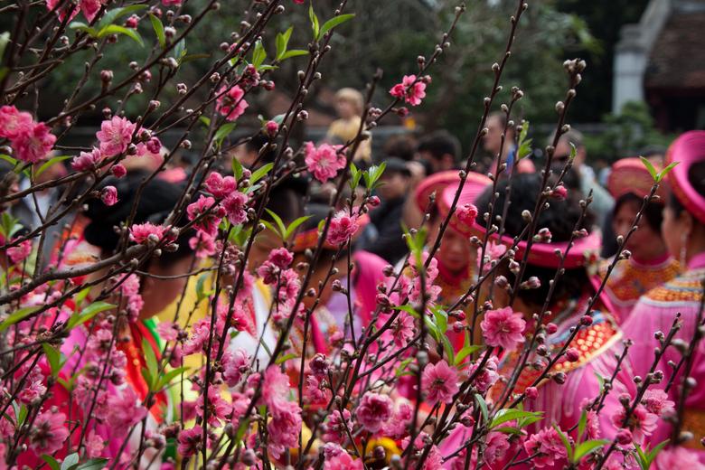 Ofefring - groepen mensen offeren in Vietnam tijdens Tet.