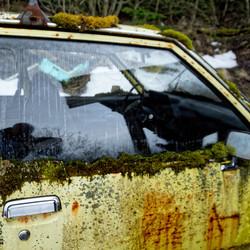 Opel Moss
