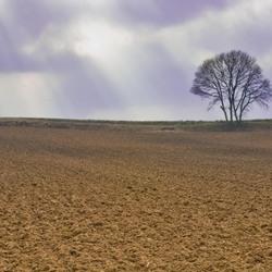 Landschap Sittard