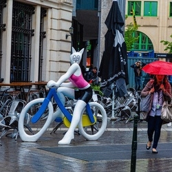 Fietser in nat Brussel