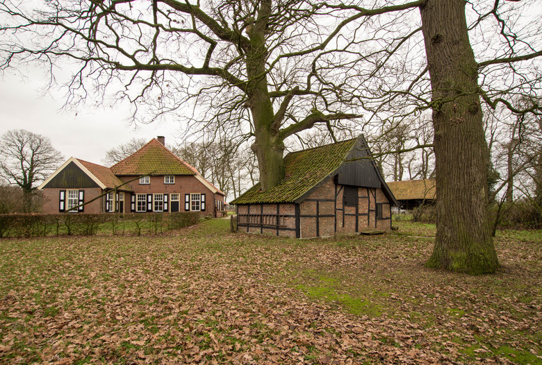 Breckelenkamp - Jonkershoesweg - Schuur met boom - 2 - Breckelenkamp - Jonkershoesweg - Schuur met boom