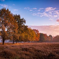 Autumn in full color