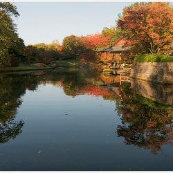 Herfst in de Japanse Tuin 2