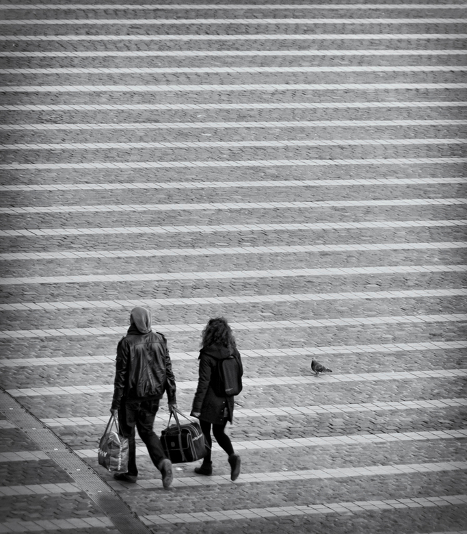 Luik-Guillemins VI, De duif - Op weg naar de trein